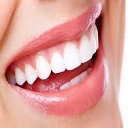 Tooth artisan logo