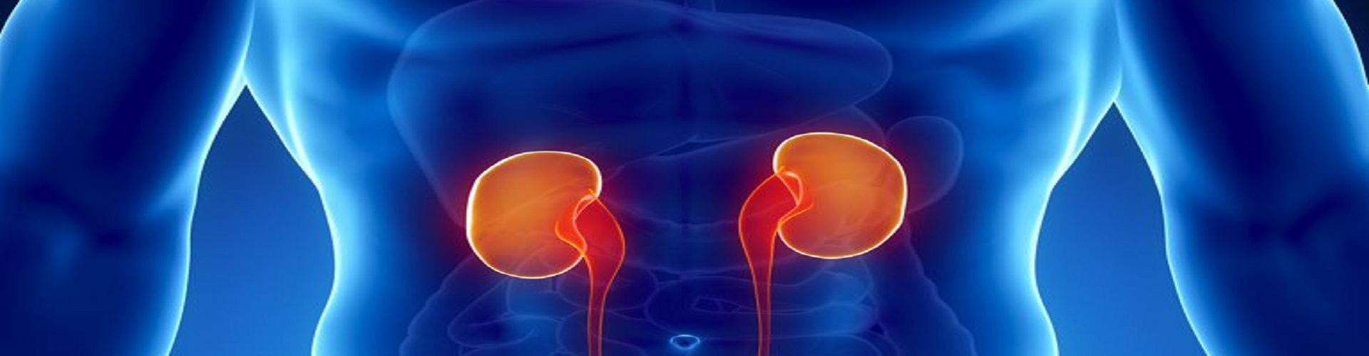 Kidney care and medical centre cover