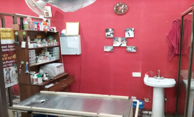 Surgivet pets clinic examination room