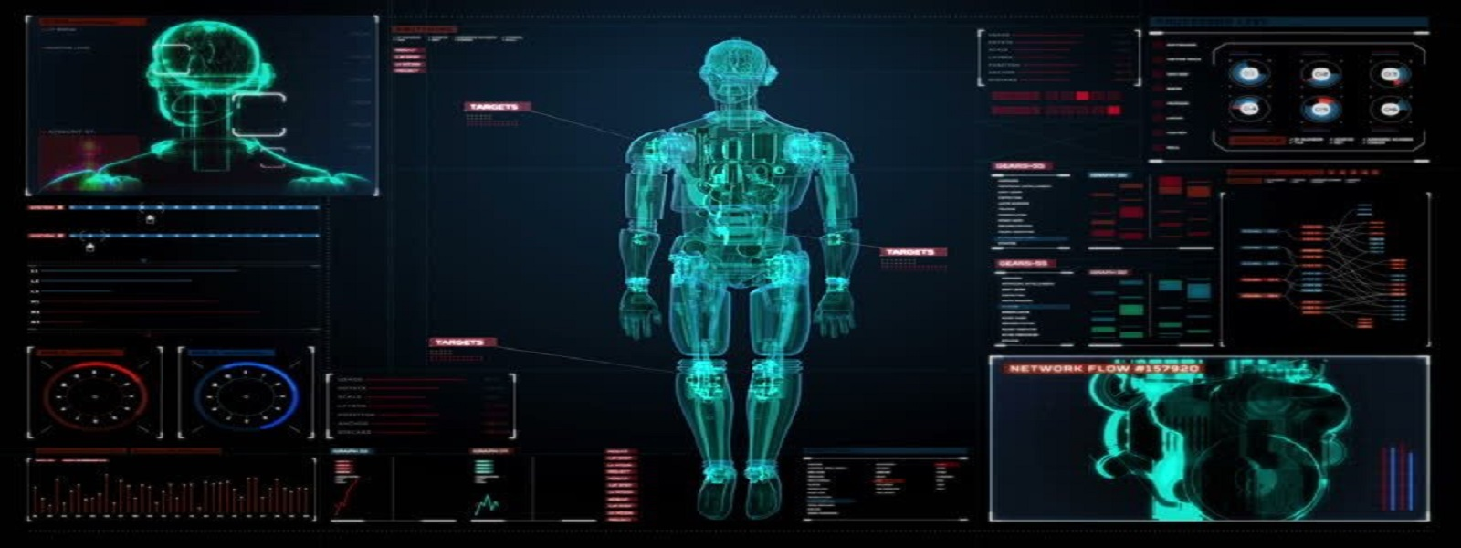 Human body and dignostic center