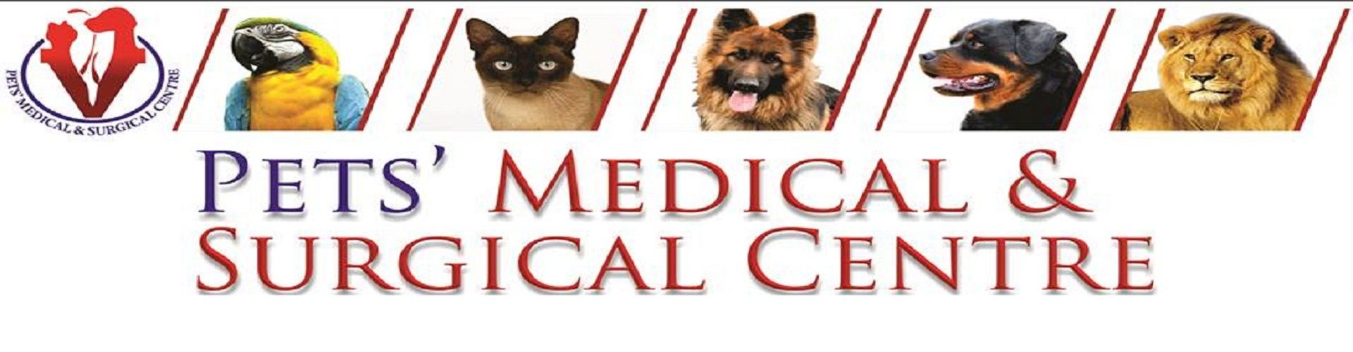 Pets medical  surgical centre model town